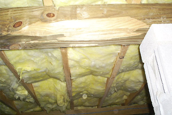 Professional Crawlspace Insulation Services